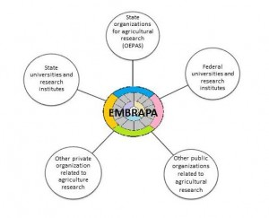Figure 1: EMBRAPA's coordination of agricultural research in Brazil